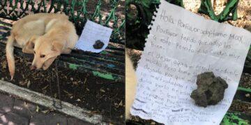 Abandonan a un perro en la CDMX con una nota