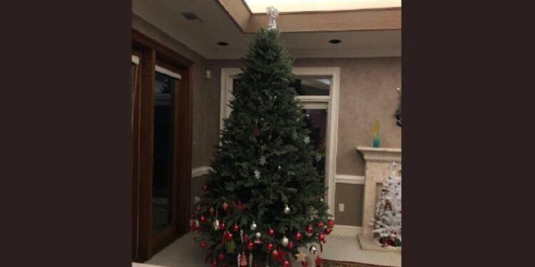 La madre compartió la fotografía del árbol navideño y se viralizó